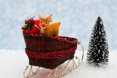 Winter Time Royalty Free Stock Photography
