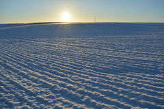 Winter time agriculture farm field and morning sunlight Royalty Free Stock Photo