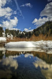 Winter Time Beaver Pond. Winter time on a beaver pond in the Wasatch National Forest in Utah USA with clouds reflecting off the calm water and snow and willows Royalty Free Stock Photos