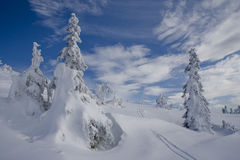 Winter time in Czech Royalty Free Stock Images