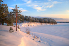 Winter time in forest lake Royalty Free Stock Photo