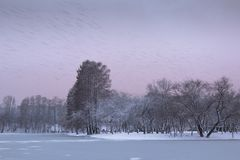 The Great Passing Away. During winter time, just after the sunset, when the sky was still colored, many birds were crossing the frozen lake, marking an ephemeral Stock Image