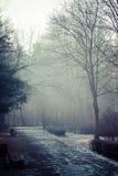 Winter time in local park, Poland. Stock Photos