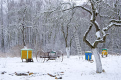 Winter time in old rural garden Stock Image