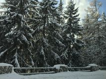 Driving home for Christmas. Winter time in Slovakia Stock Photo