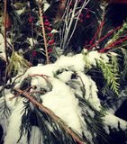 Snowing Tree Decoration royalty free stock images
