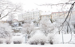 Winter Toompea Royalty Free Stock Photo