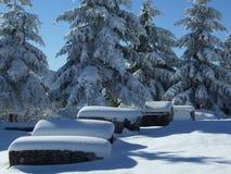 winter tourism stock image