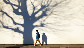 Winter town walk. Low winter sunshine with tree shadows against white wall, boy walking Royalty Free Stock Image