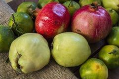 Winter trägt auf Bretterboden, Quitte, Granatapfel, Mandarinenbilder Früchte Lizenzfreie Stockbilder