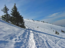 Winter track. Ski track in the snow royalty free stock image