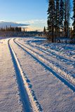 Winter Tracks. A snowcovered winter backroad early in the morning royalty free stock images