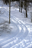 Winter tracks Royalty Free Stock Images