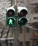 Winter traffic light Royalty Free Stock Images