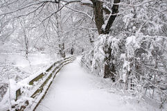 Winter Trail. Near pond in New England stock photography