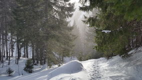 Winter trail on the mountain. Snowy trail on a mountain hike in a dimmed warm light with footsteps Stock Images