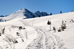 Winter trail. Winter path leading to the top of the mountain in Polish Tatra stock photos