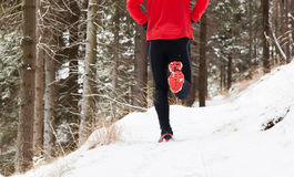 Free Winter Trail Running Stock Images - 28809054