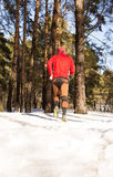 Winter trail running Royalty Free Stock Photography