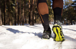 Winter trail running Royalty Free Stock Image