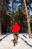 Winter trail running: man takes a run on a snowy mountain path in a pine woods. Stock Images