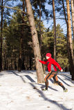 Winter trail running: man takes a run on a snowy mountain path in a pine woods. Stock Image