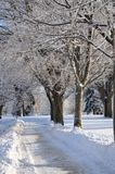 Winter Trail after Snow Royalty Free Stock Photo