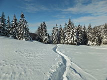 Winter  trail on the snow. Snow hiking trail winter landscape Royalty Free Stock Image