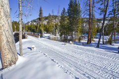 Winter trail for snow machines in Idaho Stock Images