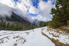 Winter trail in Tatra mountains. Poland Stock Image