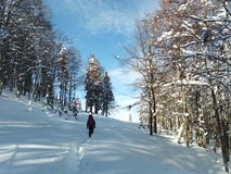 Winter trail to the mountain. Winter hiking on  forest trail  in Romania Stock Photo