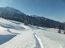 Free Winter Trail To The Mountain Royalty Free Stock Images - 52218629