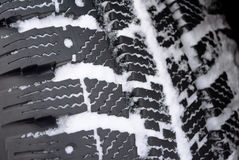 Winter tread in snow Royalty Free Stock Photos