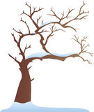 Winter tree. A vector illustration of tree in the winter Stock Photo