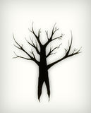 Winter Tree. Single black winter tree with no leaves and bare branches Royalty Free Stock Photography