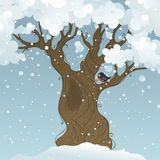 Winter tree background. Winter landscape. Vector illustration. There is place for your text Stock Photography