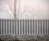 Winter tree behind the fence royalty free stock photo