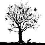 Winter tree with birds on twig  silhouette illustration Stock Image