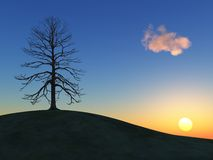 Winter tree on a hill at sunset. 3d render od a winter tree on a hill at sunset Royalty Free Stock Image
