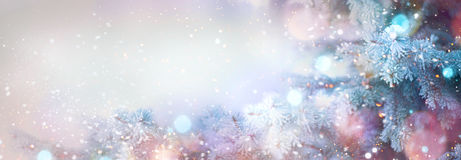 Winter tree holiday snow background. Beautiful Christmas border art design Stock Photos