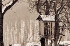 Winter Tree House Stock Photos