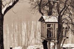 Winter Tree House Stock Photos