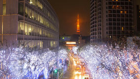 Winter tree Illumination with Tokyo tower Stock Photography