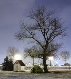 Winter tree at night. Night shot of winter tree at night, snow on the ground and abstract children play houses Royalty Free Stock Photos