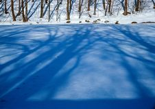 Winter tree shadows. Illustrations,snow landscape royalty free stock image