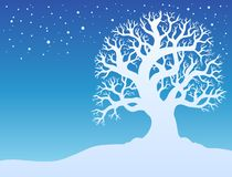 Winter tree with snow 2 Stock Photos