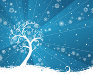 Winter tree. Snow tree on blue winter background. There is place for your text Stock Image