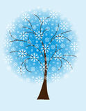Winter tree from snowflakes Stock Image