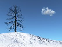 Winter Tree on a snowy hill. 3d render of a winter Tree on a snowy hill Stock Photography