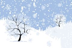 Winter tree for your design. Christmas holiday. Stock Images